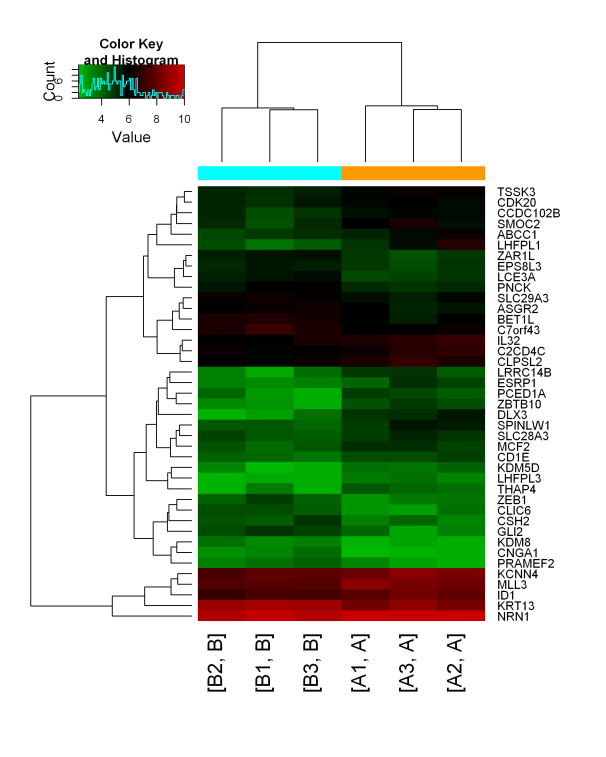 差异RNA甲基化区域的识别与聚类
