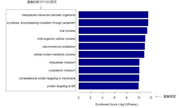 富集峰差异富集区相关基因Go分析