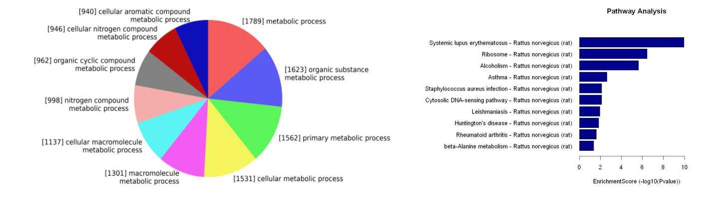 差异表达mRNA/环状RNA/LncRNA的GO和信号通路分析