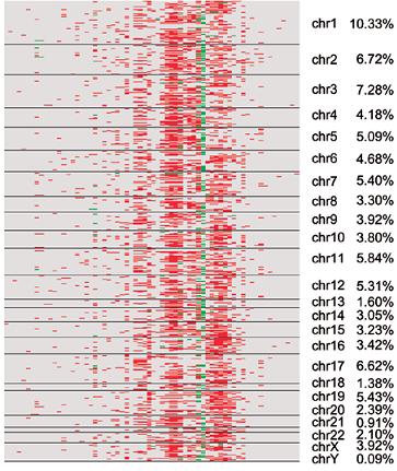 LncRNA与蛋白编码基因的表达相关性热图