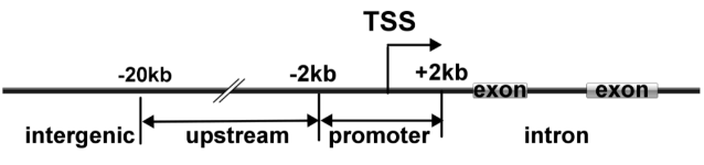 RNA甲基化位点的注释