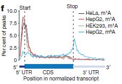 RNA甲基化富集峰分布图
