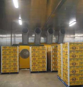 太倉食品廠1000平方食品冷庫建設