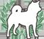 水云庄小编跟大家分享怎么预防柴犬幼犬生病?