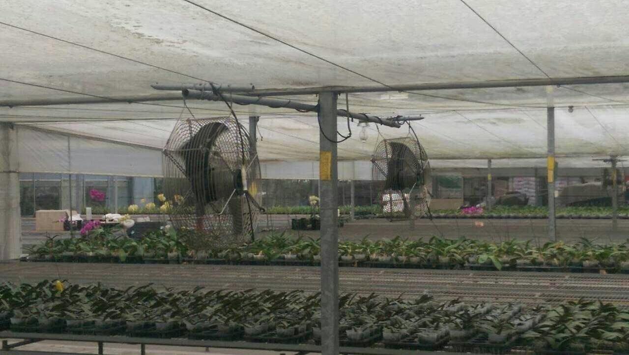 种植溫室大棚正压送风