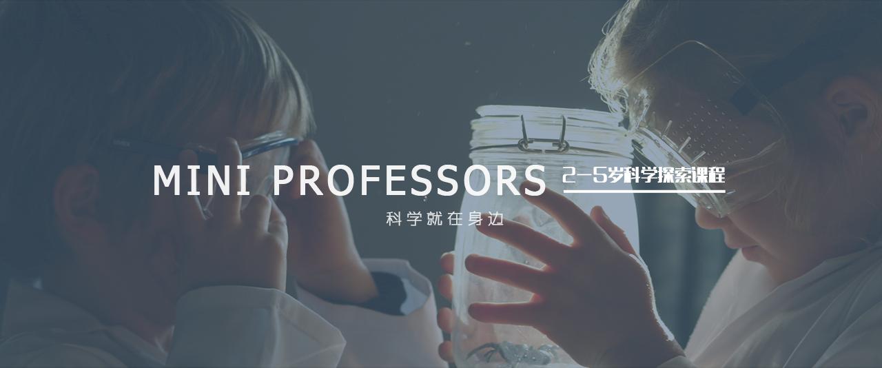 mini professors