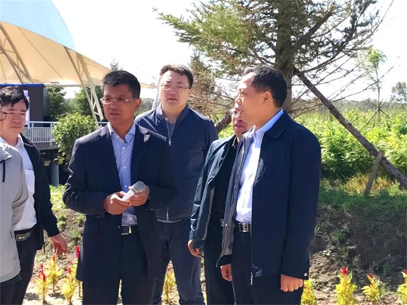 农业部调研组到吉地亚游积分王健康产业示范园调研