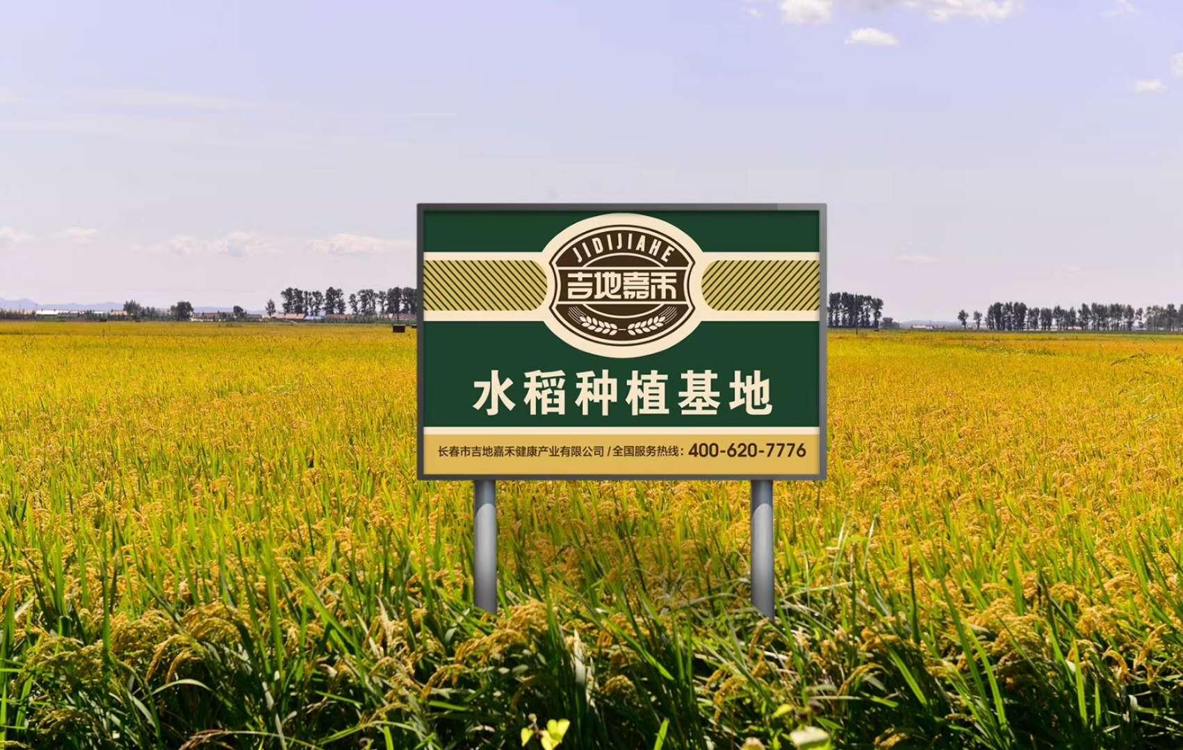有机水稻基地