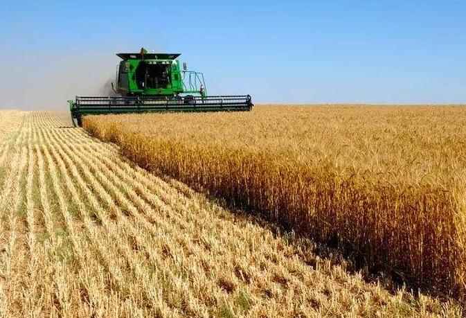 促进农村一二三产业融合发展