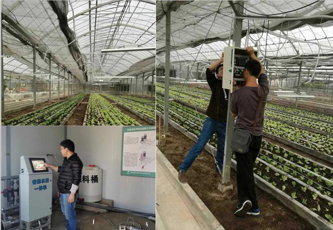 陕西利民蔬菜基地