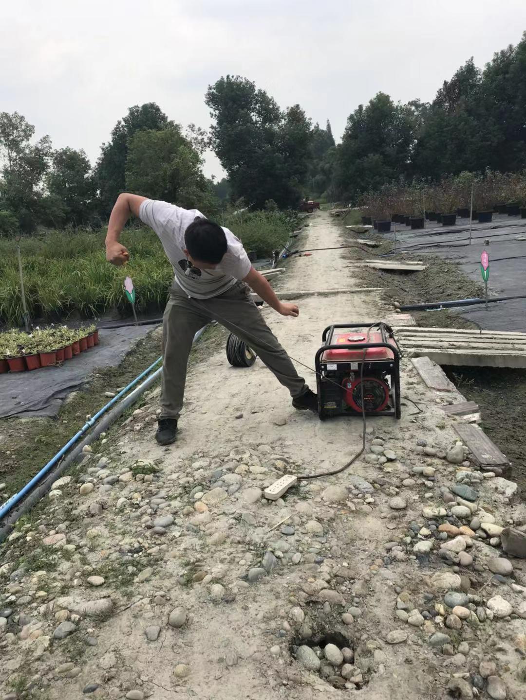 自动化灌溉工程案例