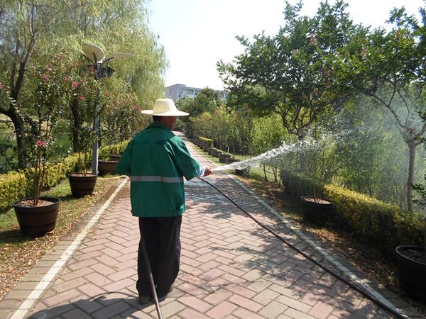 传统园林灌溉