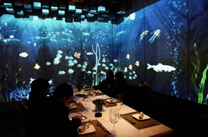 苏彭一起体验带您全息投影餐厅,科技让生活更有魅力