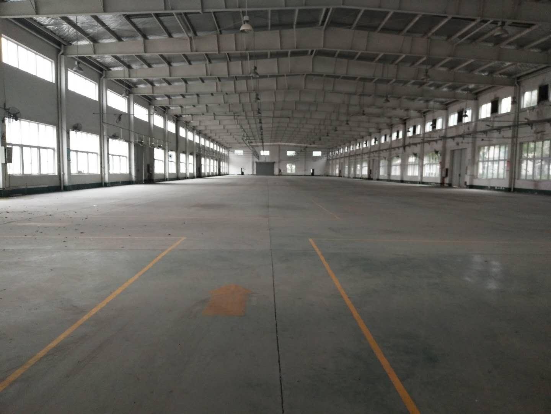 吕巷镇104板块全单层厂房仓库出租