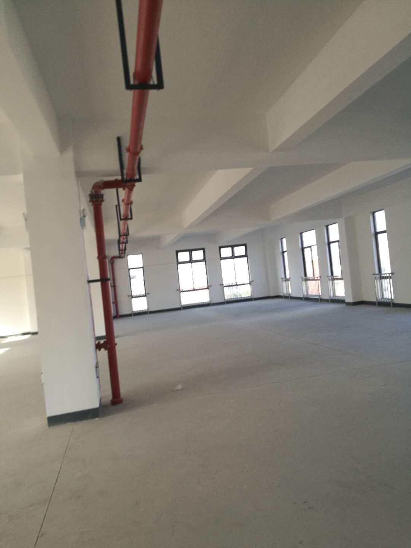 杭州湾标准厂房出租