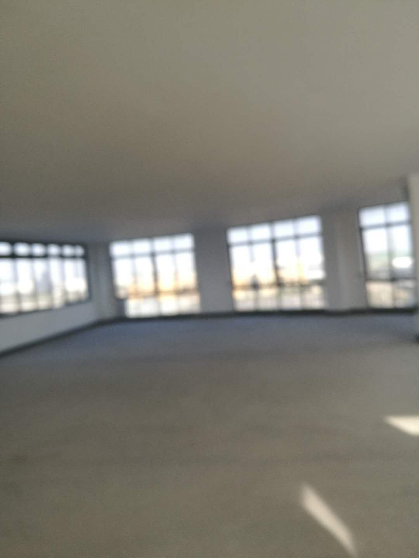 杭州湾10000平方标准厂房出租可以分割