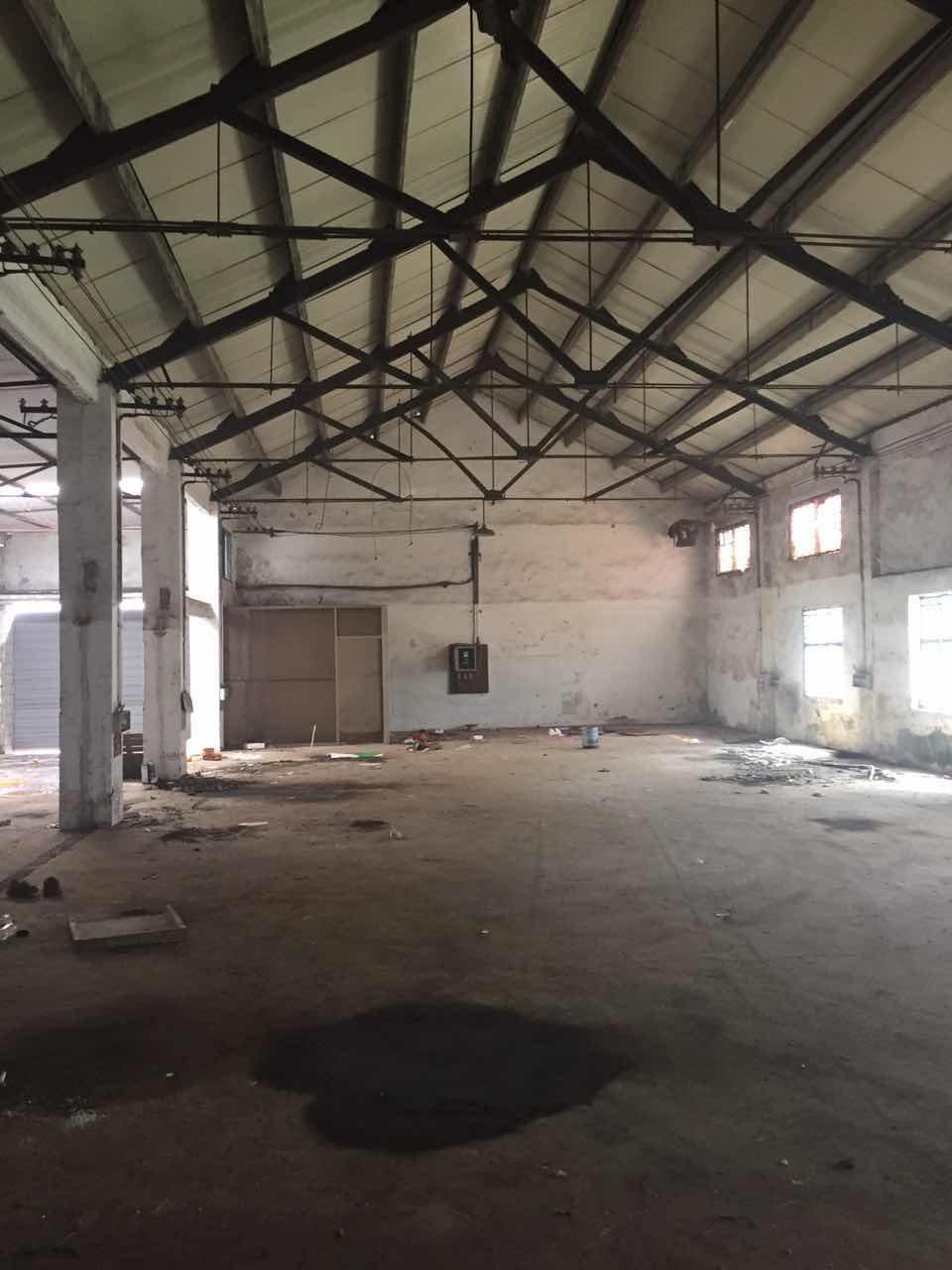 朱泾镇全单层厂房出租,层高8米,适合小机电加.工