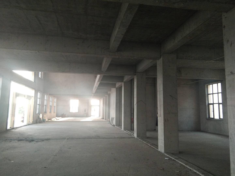 朱行镇独栋厂房仓库出租,地理位置优越,交通便捷