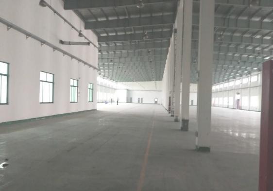 吕巷1400平方单层厂房仓库出租,高6米