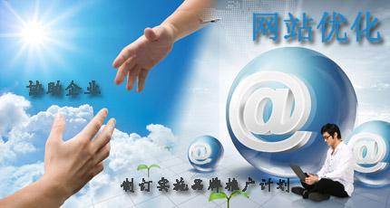 企业网站如何做网络优化推广