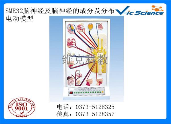 SME32脑神经及脑神经的成分及分布电动模型