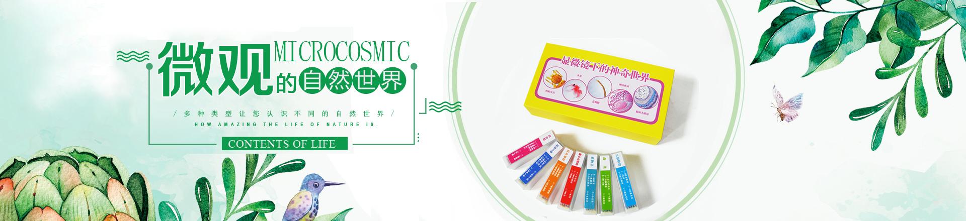 新品显微镜标本 彩色套装35片 生物切片中小学教学 蝴蝶昆虫标本