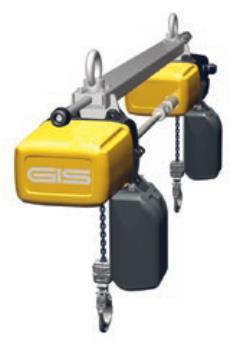 进口电动葫芦(GIS)