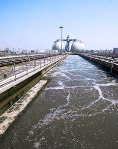 福建河道生态恢复治理案例展示