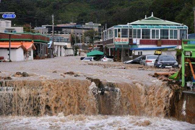 """台风""""米娜""""在韩国造成至少10人丧生"""