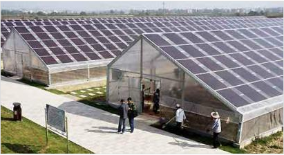 大棚太阳能发电站
