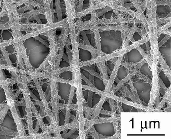 聚四氟乙烯折叠滤芯