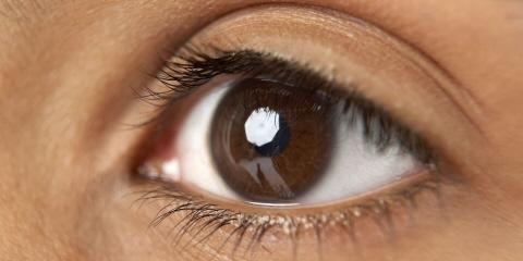 墨尔本大学眼颤症研究案例