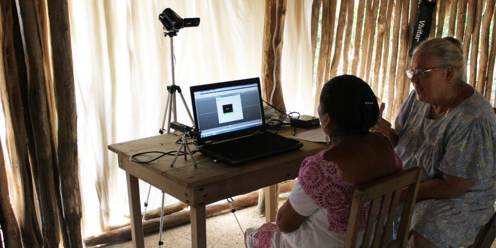 使用眼动追踪评估跨文化的社会认知和社会学习