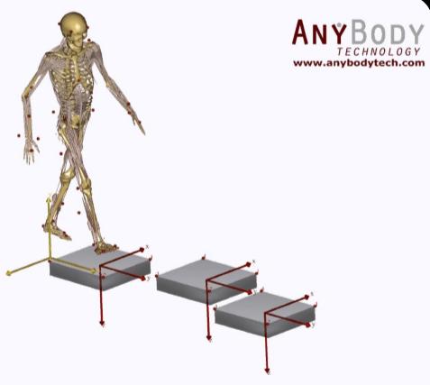 AnyBody人体建模仿真软件介绍