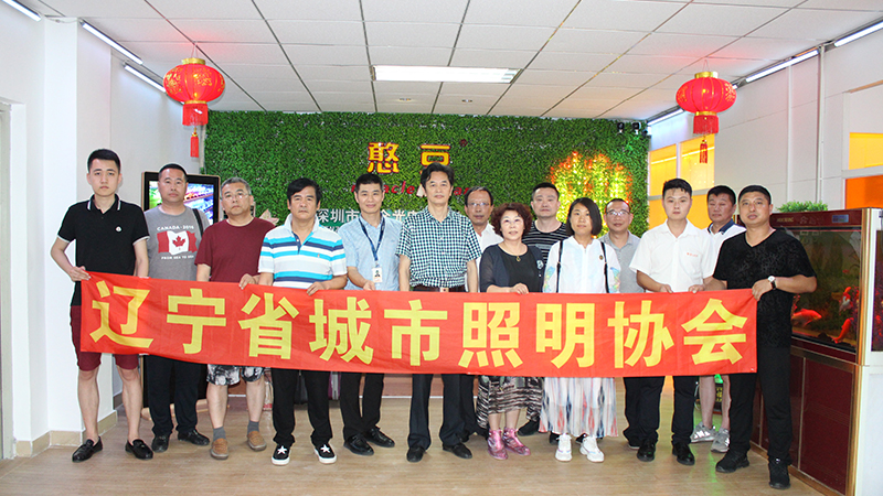 The celebration of the Liaoning City Lighting Association was held in Shenyang.