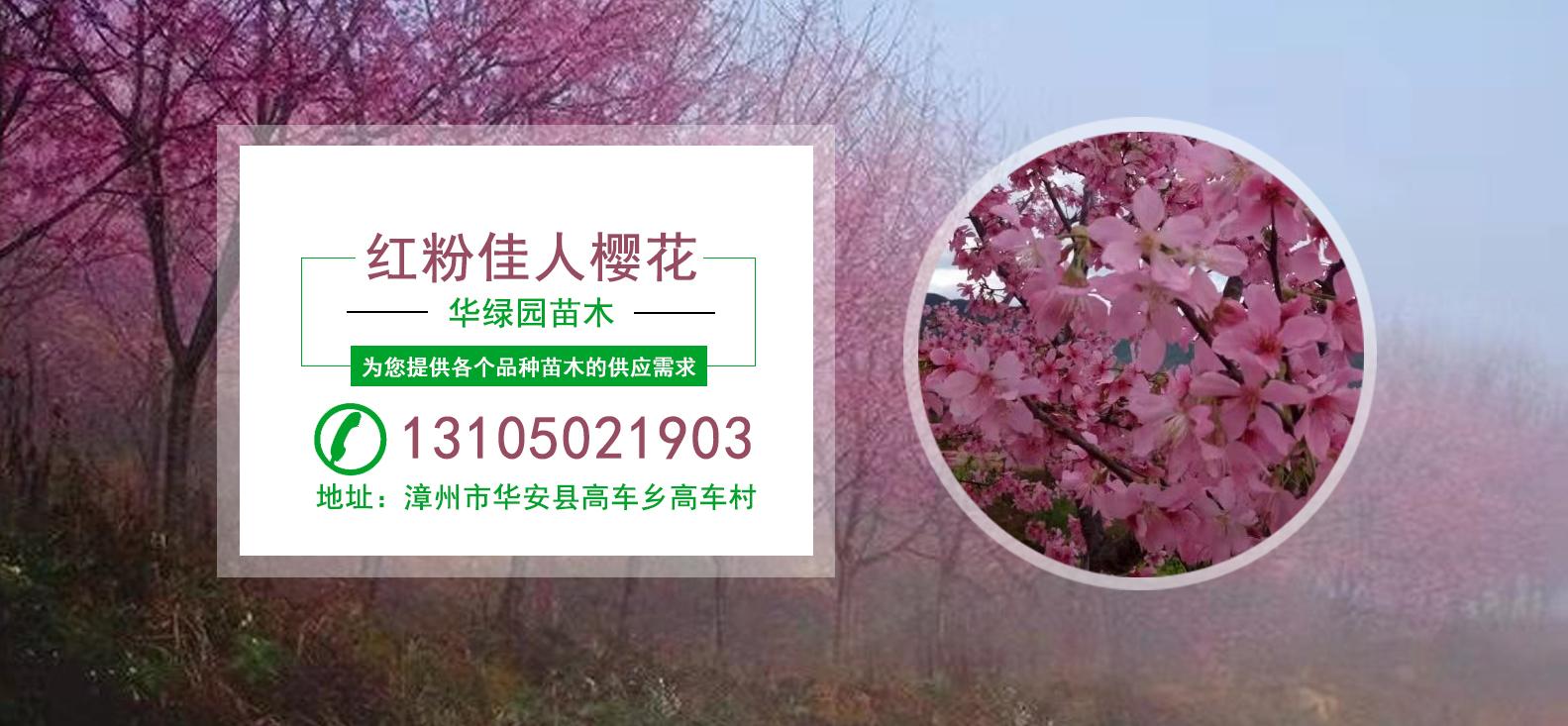 臺北華綠園苗木産品中心