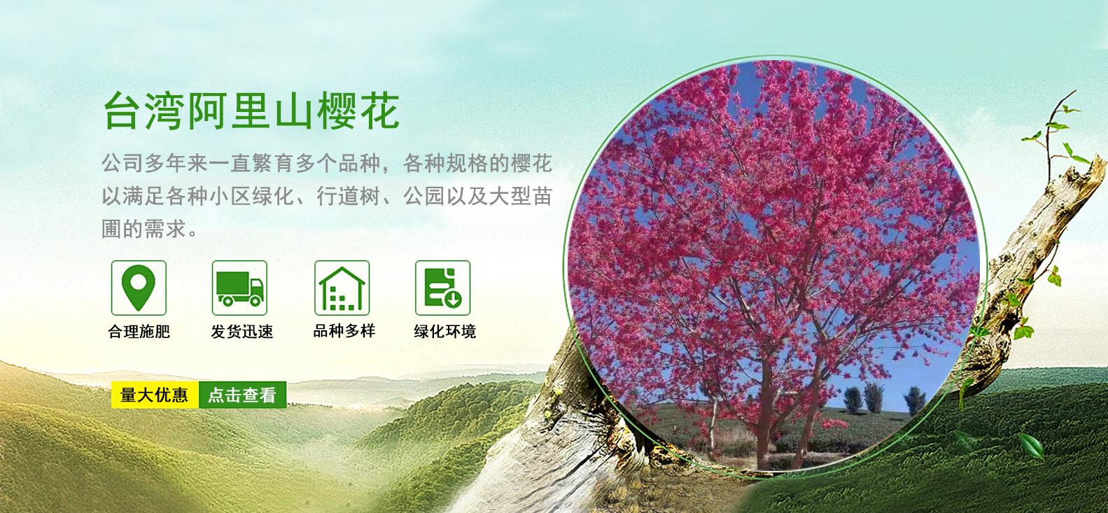 臺北華綠園苗木聯系我們