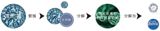 3M生物酶除甲醛与传统除甲醛方法对比