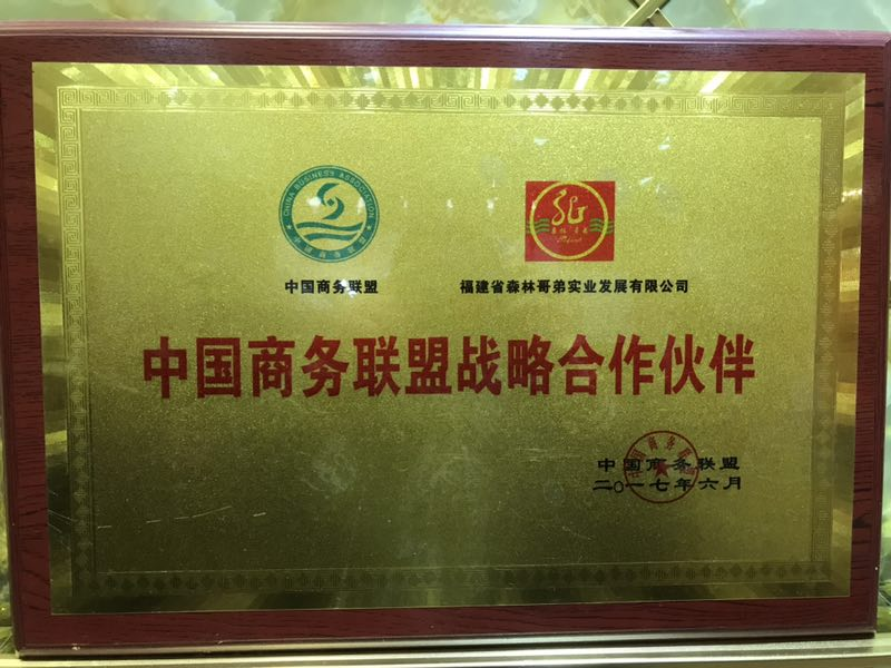 中国商务联盟战略合作伙伴