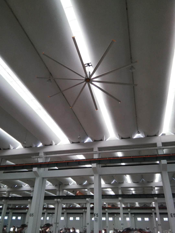 6.1m20ft10叶 工业风扇