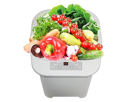 果蔬消毒净化机
