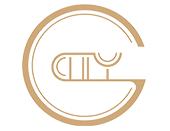 热烈祝贺上海钢城文化传播有限公司网站成功上线!