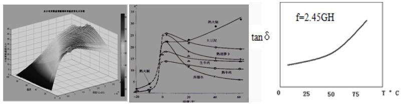 微波场内测温技术研究