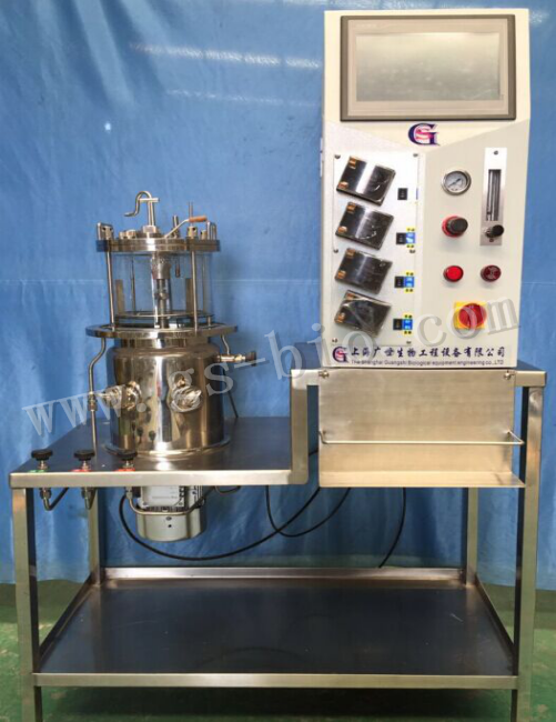 10L在位灭菌磁力搅拌玻璃发酵罐