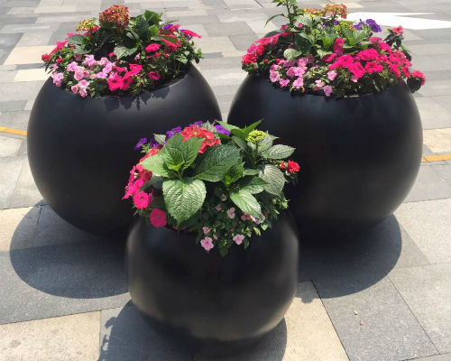 室外开花组合盆栽
