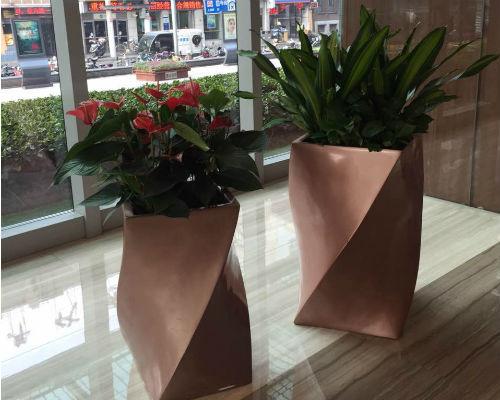 红掌巴西铁艺术组合盆栽