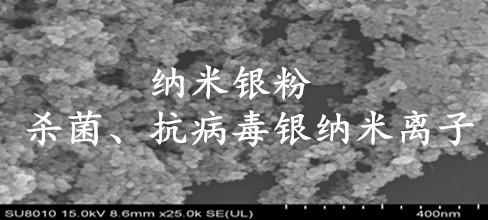 中国小粒度纳米银粉颗粒在抗流感病毒中研究进展