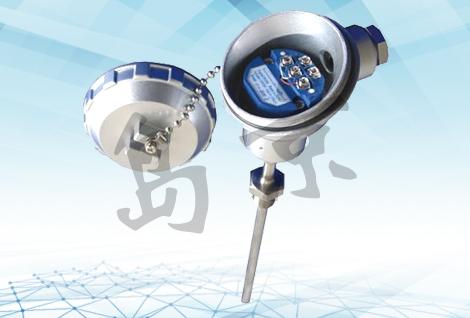DJT80Y一体化温度变送器