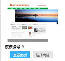 大型旅行社品牌网站建设