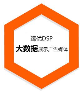 臻优DSP是大数据展示广告媒体